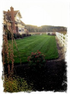 Country Cuts Lawncare results!