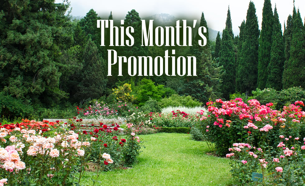 One Month FREE! « Country Cuts Lawn Care